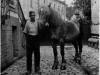 004a-1936-1937-Helmut-Heiss-mit-Pferd-im-Hof
