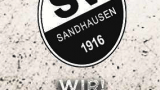 SV Sandhausen Ticker: Denis Linsmayer verlässt den SVS …