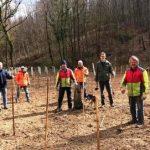 Baumpflanzaktion in Meckesheim – nicht öffentlich – verständlicherweise …