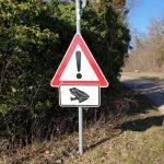 Mitteilung des Landratsamt Rhein-Neckar-Kreis – Vorsicht Krötenwanderung