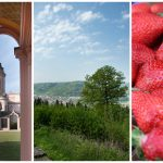 Pfingstferien in der Region: Kultur, Natur und Kulinarik …