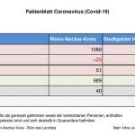 31. Juli 2020 – aktuelles Faktenblatt des Rhein-Neckar-Kreis