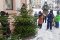 Kindergärten schmücken Bäumchen 2020 –Schmück deinen eignen Tannenbaum