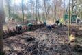 Das Kreisforstamt informiert:  Internationaler Tag der Wälder am 21. März
